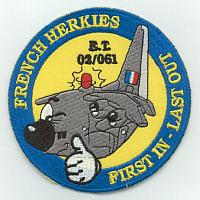 European Air Forces C-130 Patches